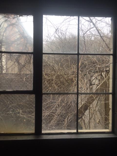 Warehouse window views